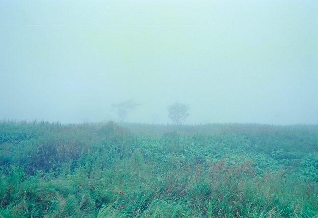 かつての集落跡には茫洋とした濃霧の原野が広がっていた