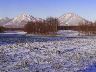 十勝平野から望む東西ヌプカウシヌプリ(北海道:2002年11月)