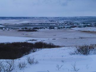 霧多布湿原(北海道:2003年3月)