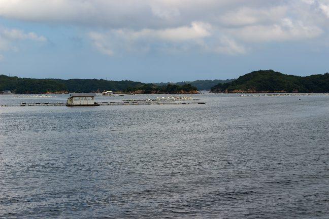 真珠養殖の筏の合間を縫って、英虞湾内を航行する