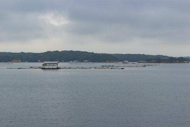 養殖筏や釣り筏を眺めつつ英虞湾を航行する