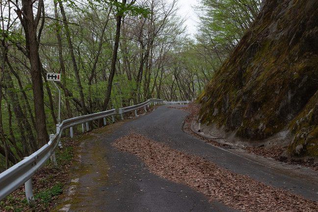 落ち葉が堆積し交通量も僅少の峠道を登り続ける