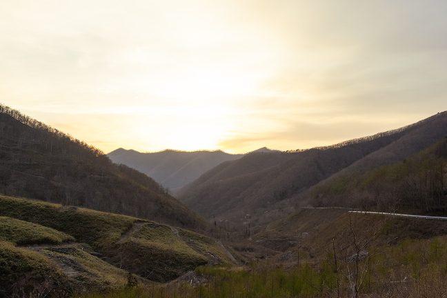 箱根峠から住田町側は皆伐された植林地が広がっていた