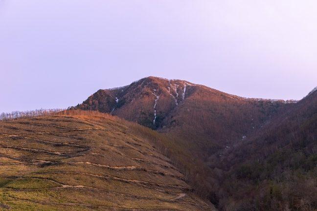 残雪の残る愛染山が夕焼けに染まり始めた