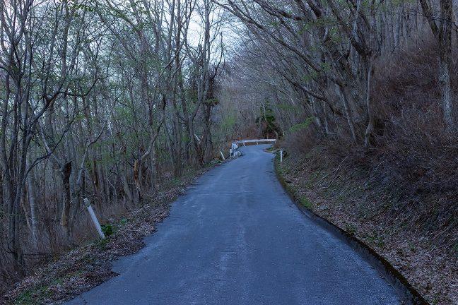 箱根峠に向けて朝一番から登り坂を走る