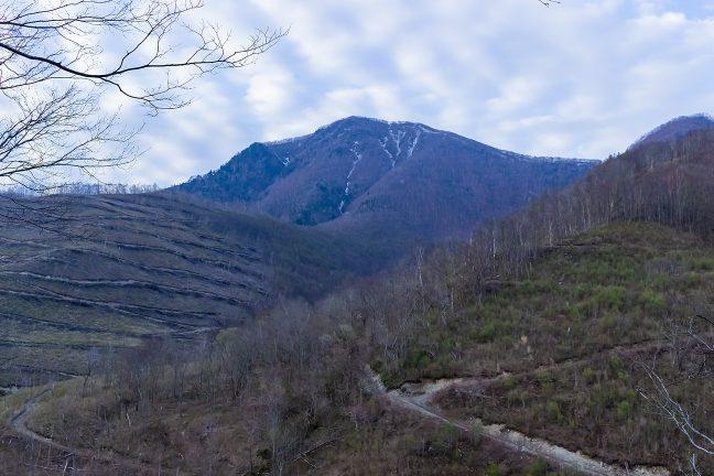 早朝の大気の中で静かに佇む愛染岳