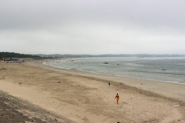 長大な国府白浜の海岸
