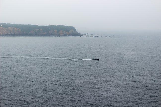 水面を進む一艘の船は様になる