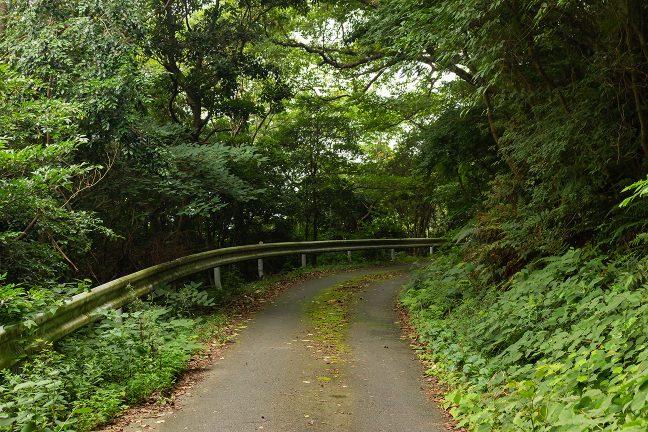 鎧崎から石鏡にかけての道路状況