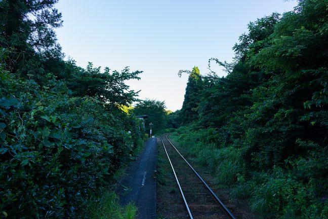 丘陵の茂みに覆いつくされそうな久我原駅