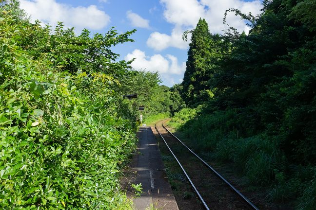 7月の緑は勢い盛んで駅は生命の息吹に包まれていた