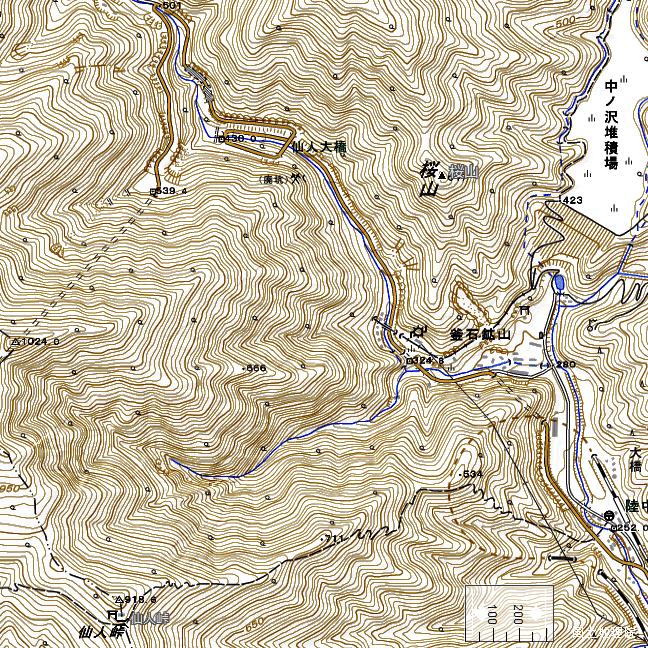 地形図:仙人峠東側