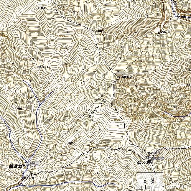 地形図:仙人峠西側